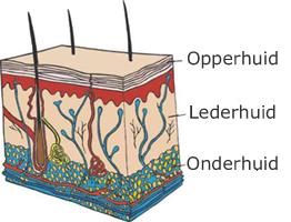 huid-beschadiging-scheren